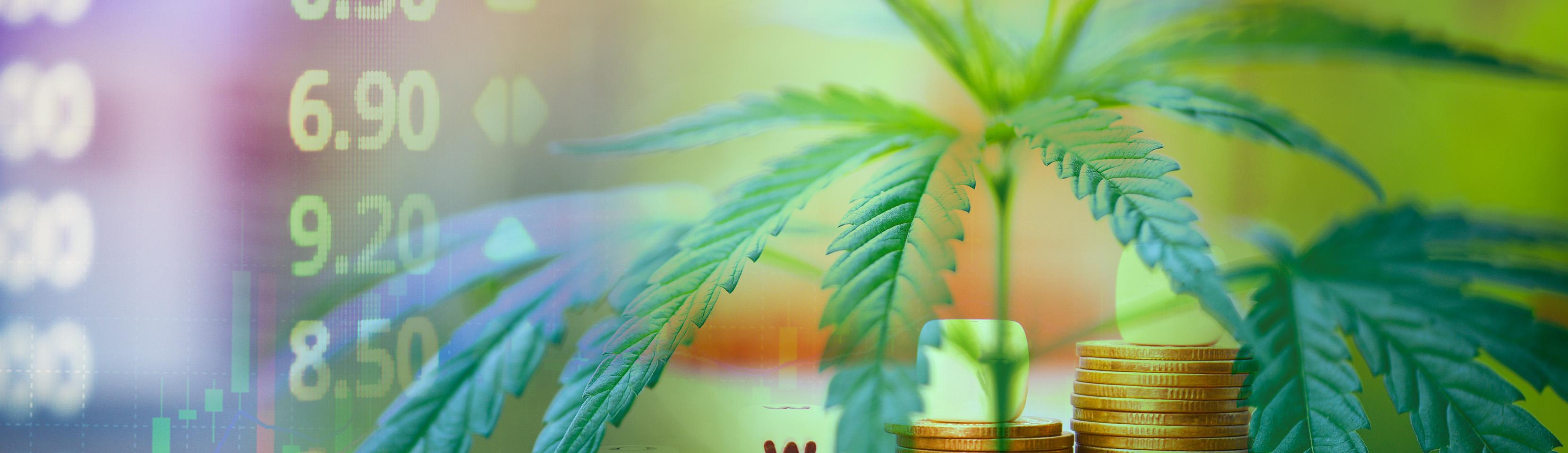 How Cannabis Companies Can Shield Their Trade Secrets